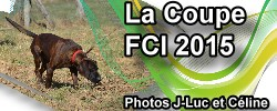 La coupe de France FCI 2015
