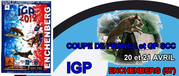 Coupe IGP Enchenberg 2019